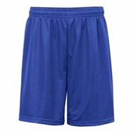 "Badger | Badger 9"" Mini Mesh Short"